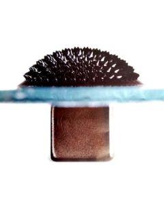 Ferro Fluid 10ml [2420]